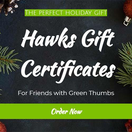Hawks Gift Certificate